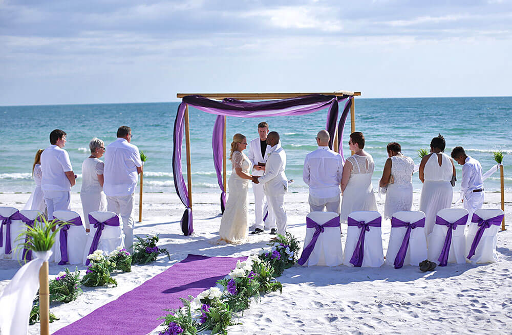 Ocean Waves Purple Beach Wedding Package With Carpet Runner