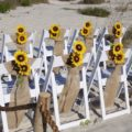 White chairs with burlap and sunflowers | beach wedding in Florida