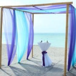 Purple / Aqua Close up   Florida Beach Wedding   Siesta Destination ...