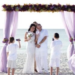bamboo trellis with flowing purple organza fabric | wedding ceremony under siesta dream, florida beach
