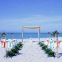 tropical breeze beach wedding package in orange and aqua | florida sun weddings