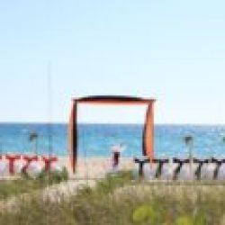 tropical breeze beach wedding package in orange and black | florida sun weddings