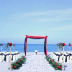 tropical breeze beach wedding package in red and black | florida sun weddings