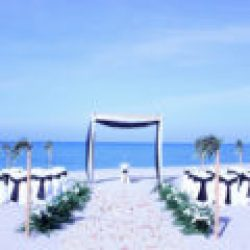tropical breeze beach wedding package in white and black | florida sun weddings