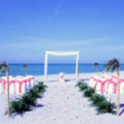 tropical breeze beach wedding package in coral and white | florida sun weddings