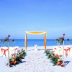 tropical breeze beach wedding package in orange and yellow | florida sun weddings