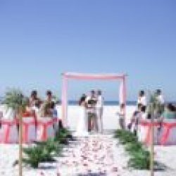 tropical breeze beach wedding package in white and coral | florida sun weddings