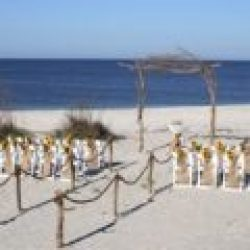 Simply Nature set up with sunflowers for Florida beach wedding | Florida Sun Weddings